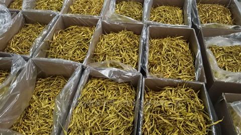锅炉烘干黄花菜烘干机干燥机价格