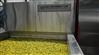 黄花菜烘干设备多少钱__