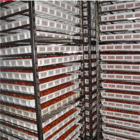 陕北鲜枣加工设备 红枣烘干机生产厂家介绍