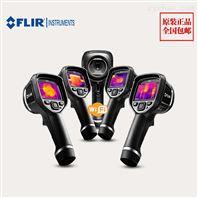 紅外測溫儀E4菲力爾FLIR