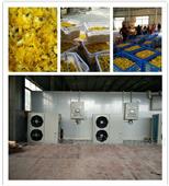 空气能菊花烘干设备与传统干燥方式的对比