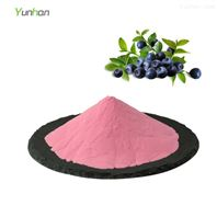 賽揚熱銷果蔬粉系列速溶藍莓粉