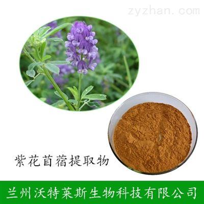 紫花苜蓿提取物 10:1 长期供应