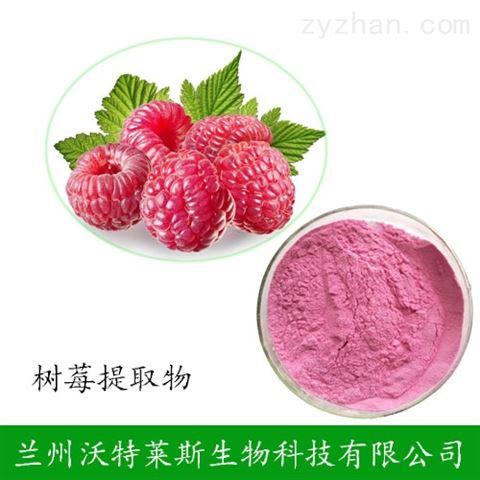 树莓粉 树莓汁粉 树莓提取物 厂家直销包邮