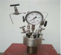 實驗室微型磁力高壓反應釜