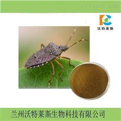 九香虫提取物10:1  包邮