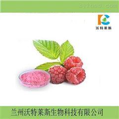 红树莓果汁粉  树莓粉  1公斤包邮