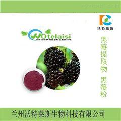供应现货   巴西莓果粉  包邮价格
