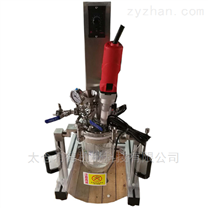 實驗室真空攪拌溶解反應釜