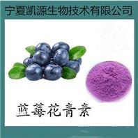 藍莓膳食纖維 纖維粉 1公斤起訂包郵