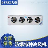 安徽防爆特種冷風機DL-470