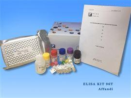 γ氨基丁酸B型受体进口试剂盒