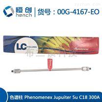 原装进口C18 300A液相色谱柱