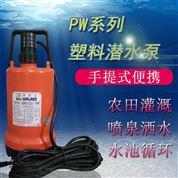 台湾华乐士轻便式单相塑料海水潜水泵