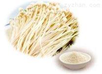 金針菇粉固體飲料新型添加原料 植物提取物