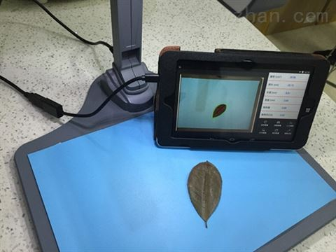 FS-leaf1000叶片图像分析仪