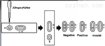 胶体金免疫层析法检测呋喃妥因检测试剂盒