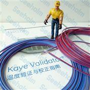 美國GE KAYE溫度驗證儀濕熱熱電偶