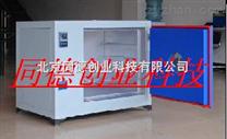 热风循环烘箱TYR/DK-70A