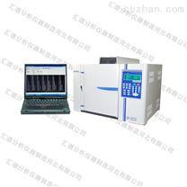 供应河北SP-2020型气相色谱仪 汇谱生产
