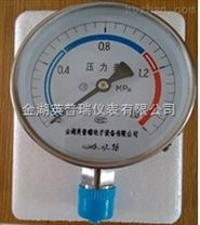 英普瑞儀表Y-100BF不銹鋼壓力表
