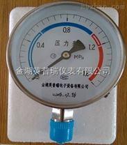 Y-200BF不銹鋼壓力表