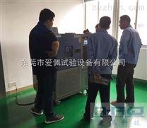 可編程恒溫恒濕試驗機/恒溫恒濕環境監測箱