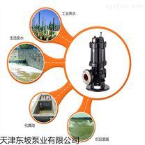 天津大型污水泵