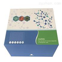 小鼠胆固醇24S-羟化酶(CYP46)ELISA试剂盒