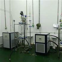 雙層玻璃反應釜成套裝置