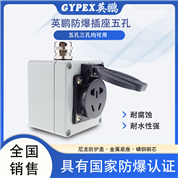 供应英鹏工业防爆插座  五孔接线板86型220V