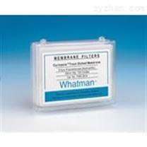 whatman 硝酸纤维素NC膜FF120HP
